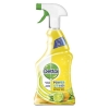 Dettol allesreiniger Power & Fresh citroen spray (500 ml)