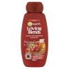 Garnier Loving Blends Cranberry shampoo (300 ml)  SGA00009
